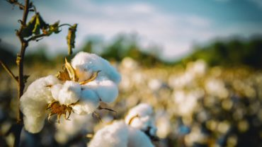 Why cotton is your biggest foe on a trek – Trekking 101 – 4Play.in